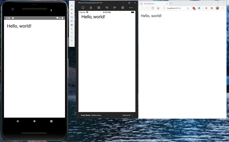 The Cat API Client app running cross-platform
